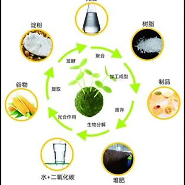 生物基塑料与生物降解塑料