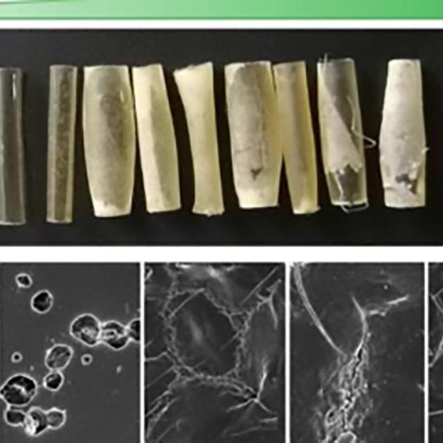 什么是降解塑料?