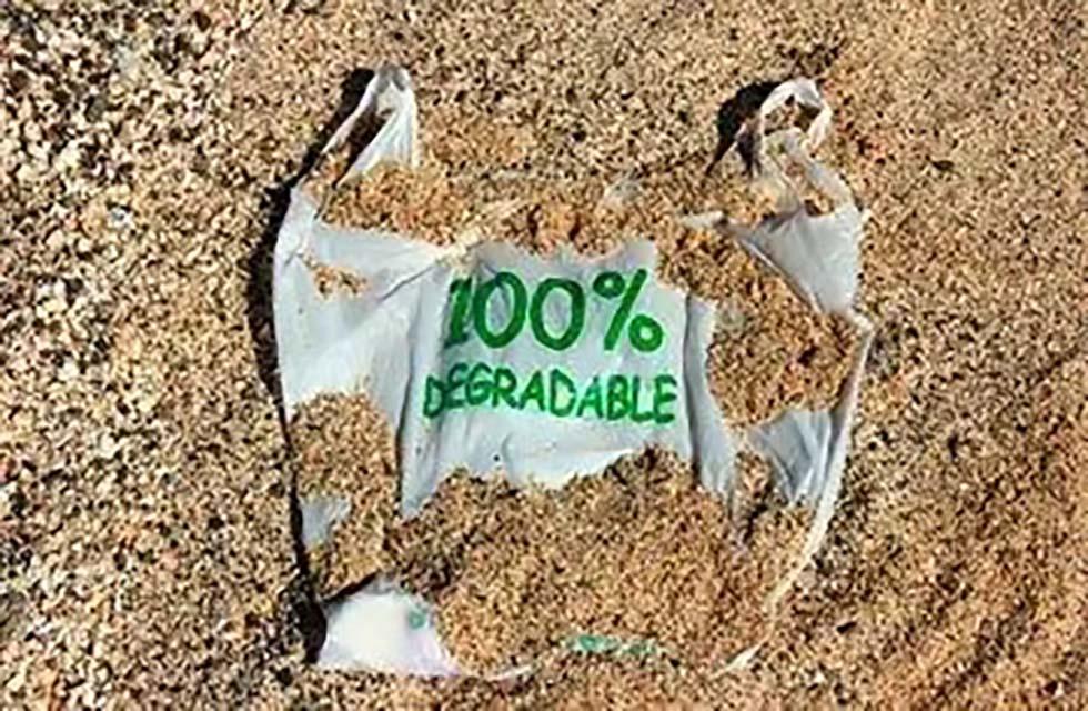 210-工业化堆肥与家庭堆肥的区别与联系