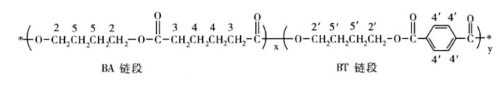 219-PBAT分子链