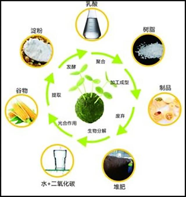 182-生物基塑料与生物降解塑料